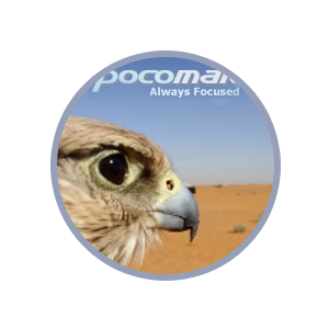 pocomail to outlook pst